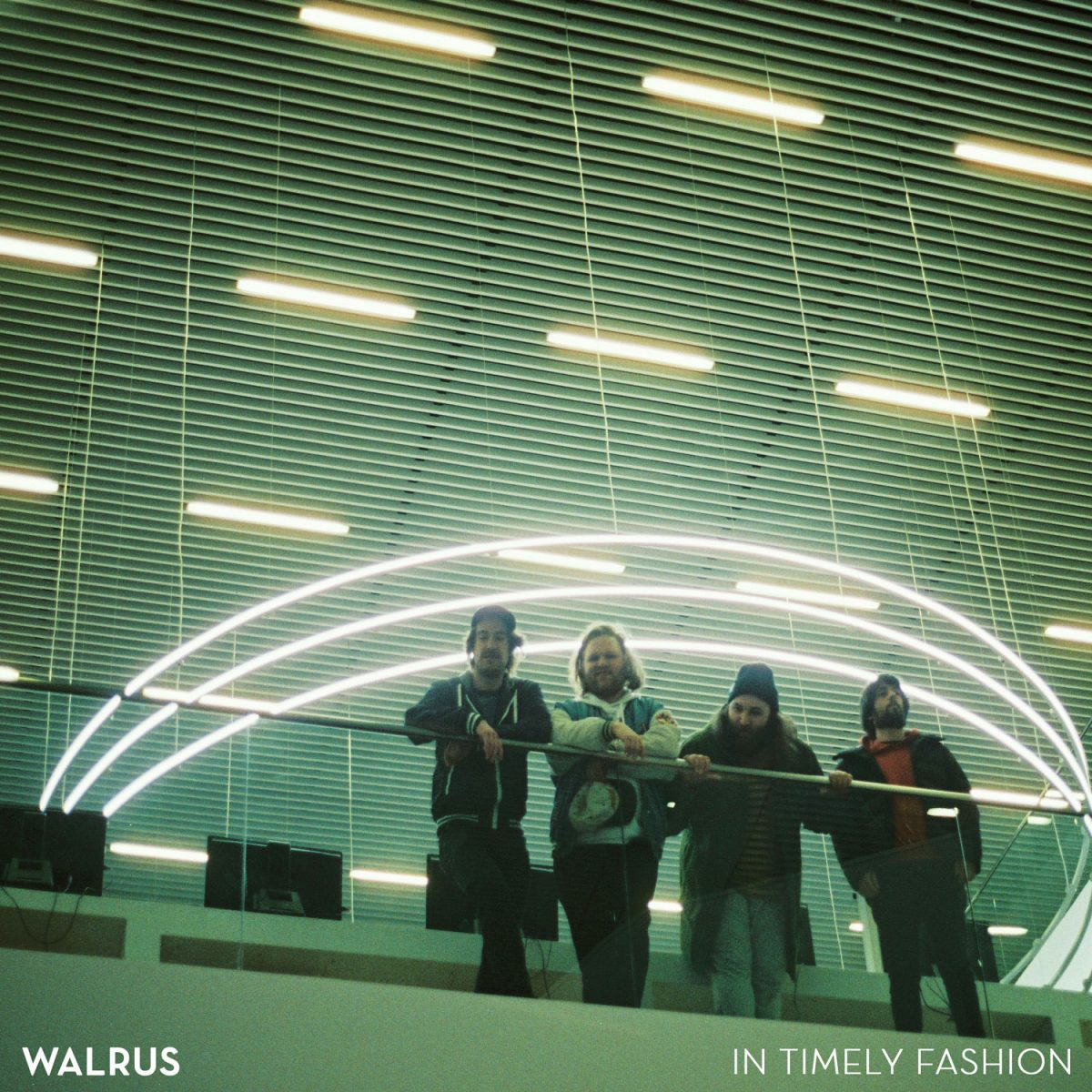 WALRUS // Stereogum premiers IN TIMELY FASHION
